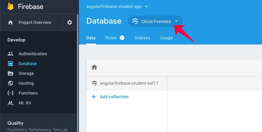 Firebase database screen